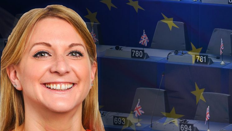 74cd566908db3 Brexit Party MEP worked for Cambridge Analytica