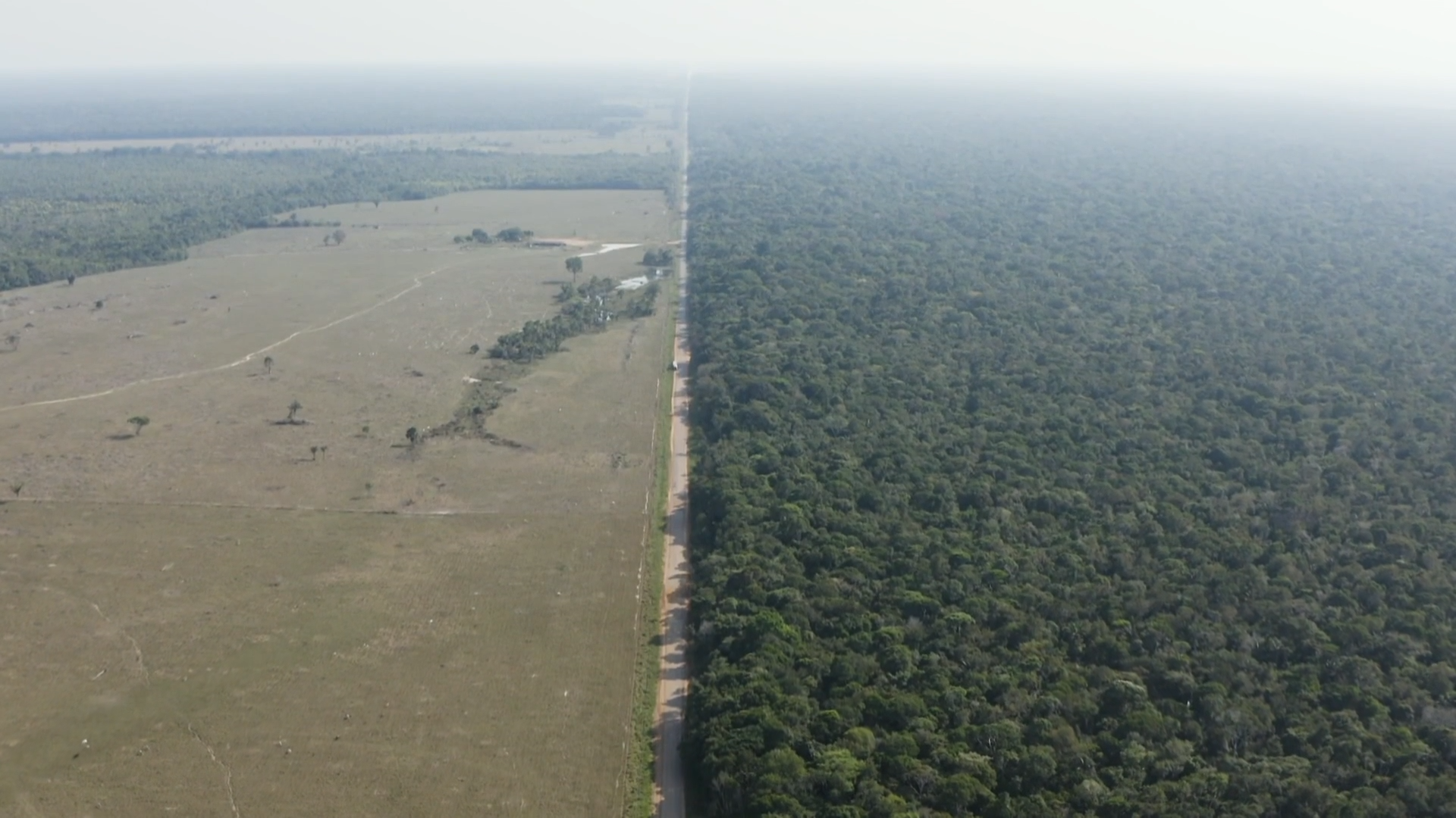 President Bolsonaro and his supporters defy concerns over deforestation of Brazil's Amazon - channel 4